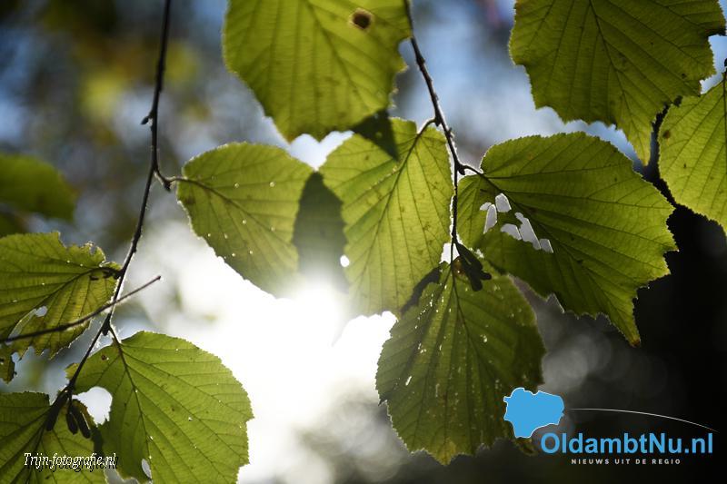 Photo of Weekendweerbericht: vleugje herfst met zon en buien