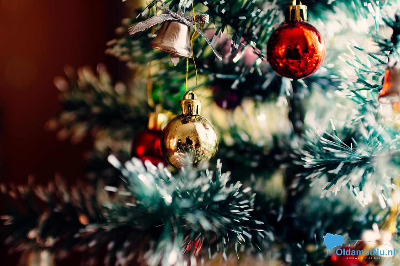Photo of Kerstbomen bij de weg in de gemeente Oldambt