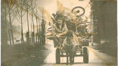Photo of Afval- en papierverwerkingsbedrijf Virol viert 50ste verjaardag